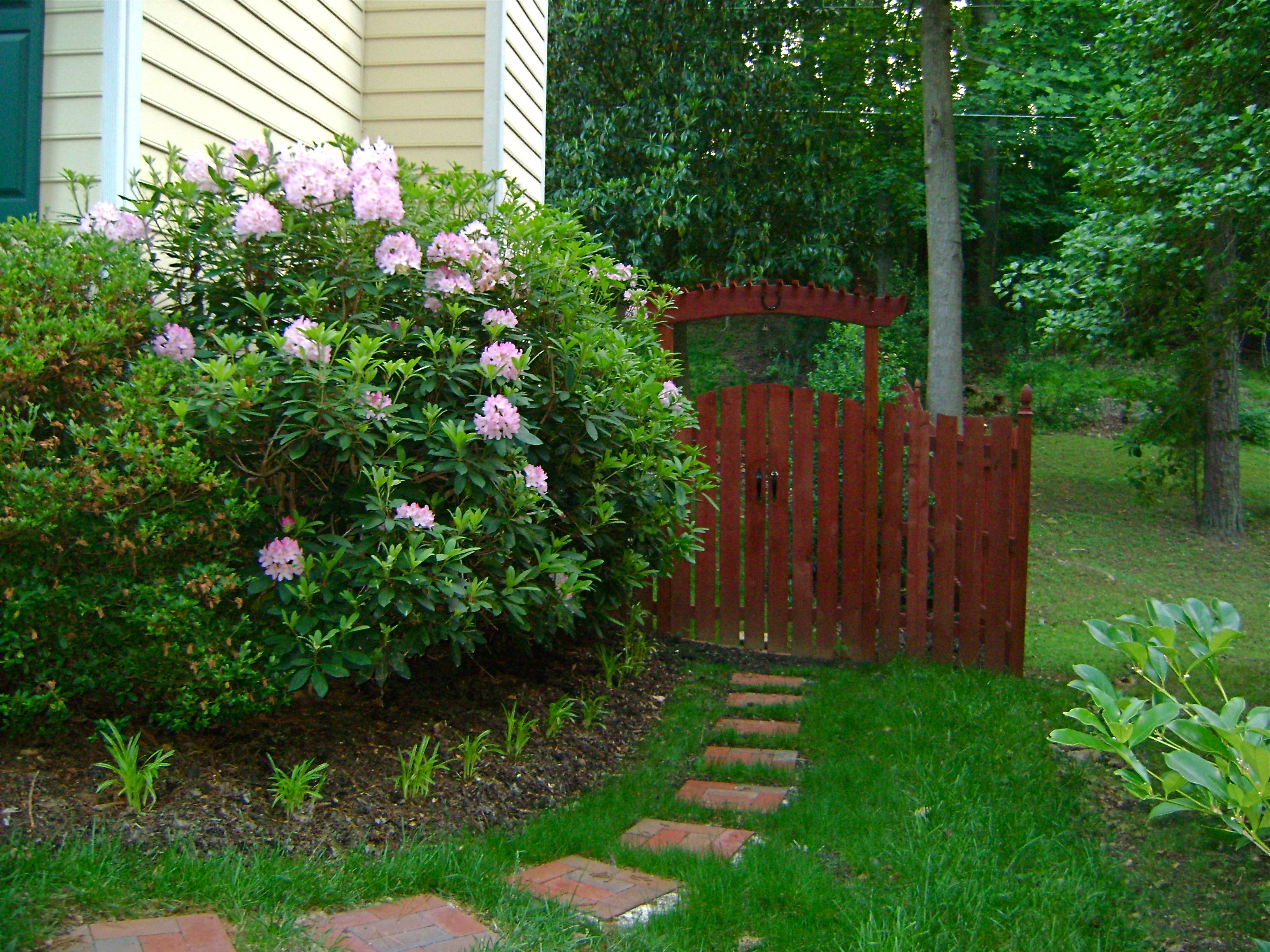 Stepping Stones- A budget friendly landscape pathway ...